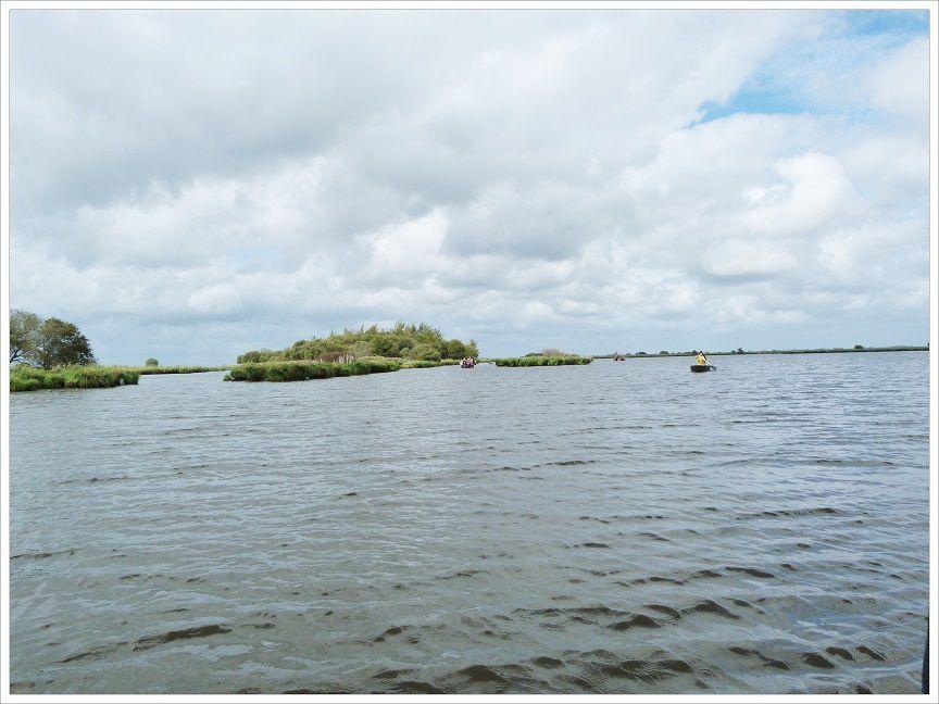 Le  marais de  la  Brière  en  barque .