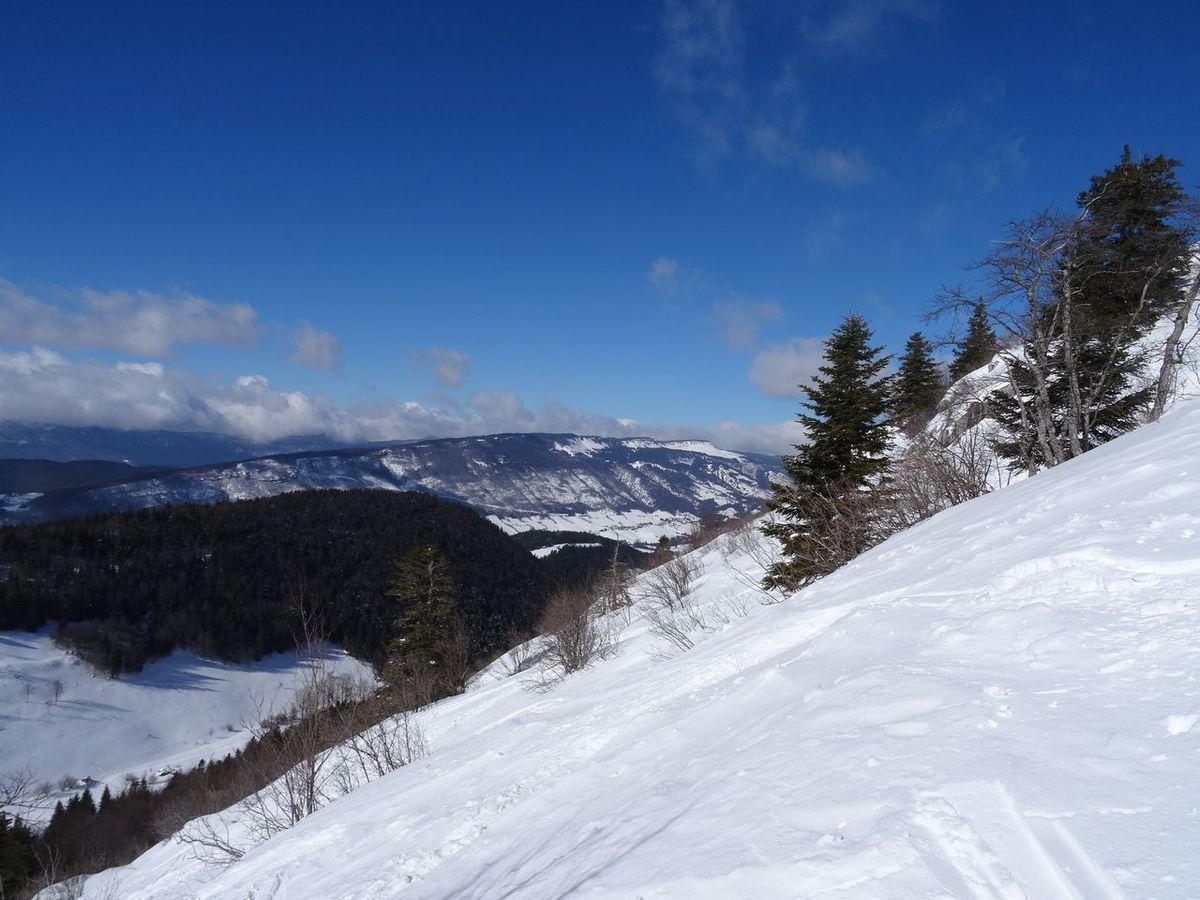 Vue sur le domaine de ski de fond : je peux surveiller Anne-Marie ;-)