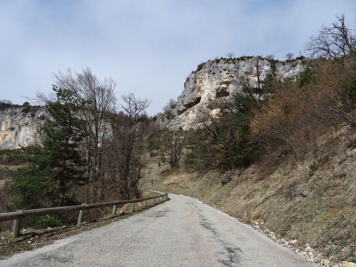 Deux biches, deux grimpées et deux cyclistes dans le Vercors