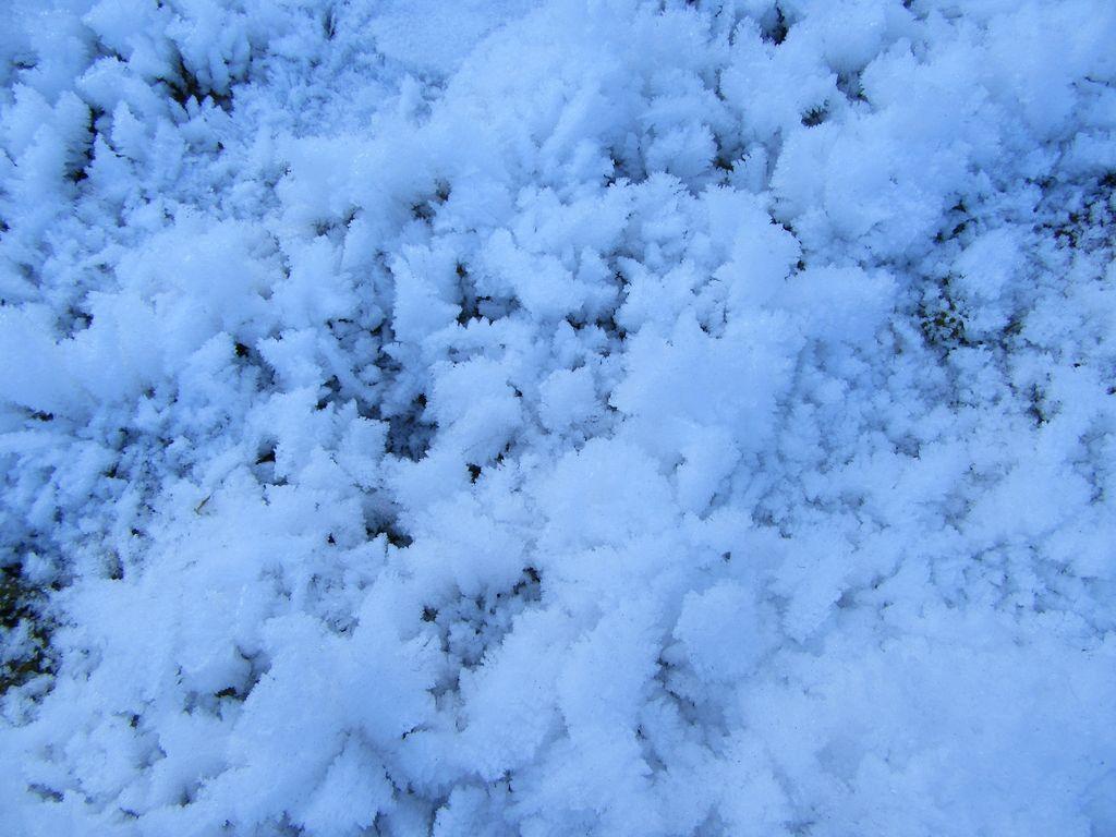 Au sol, il ne s'agit pas de neige ... mais UNIQUEMENT de givre