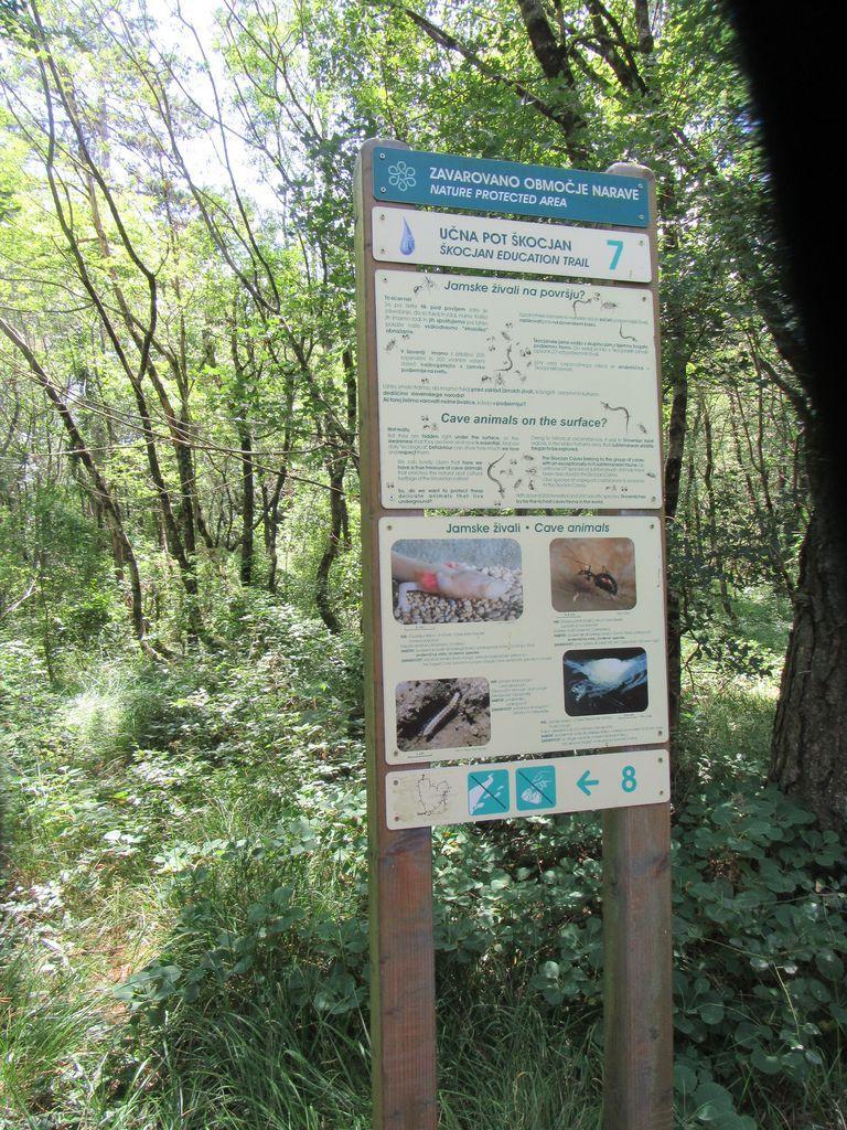 L'ensemble du site , et le village de Skocjan qui domine les grottes