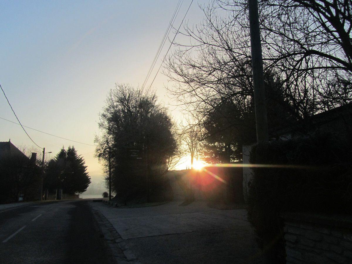Le soleil se lève derrière  les arbres,