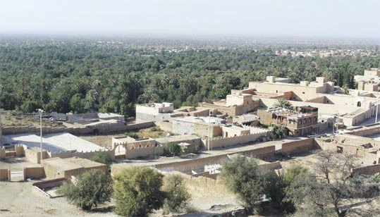 Les 3.800 habitants de la ville de Tiout, partagée en 7 douars, vivent de l'élevage et de l'agriculture, mais aussi de la commercialisation de l'huile d'argan et d'olive et du tourisme.