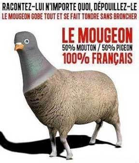le Français est-il devenu un mougean ?