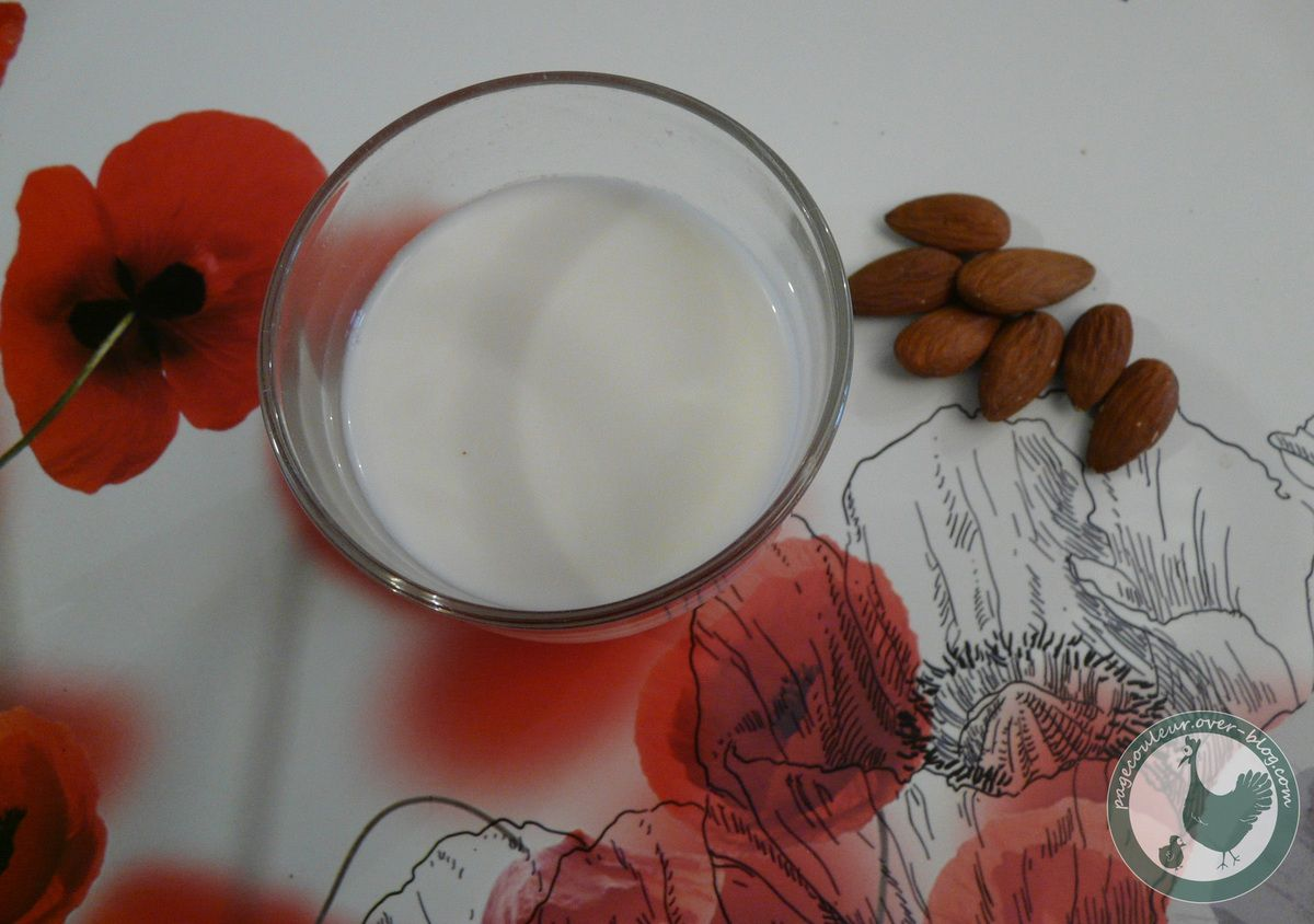 mon lait d'amandes