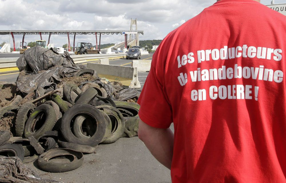 LES FRANÇAIS SOUTIENNENT MASSIVEMENT LE MOUVEMENT DES ELEVEURS
