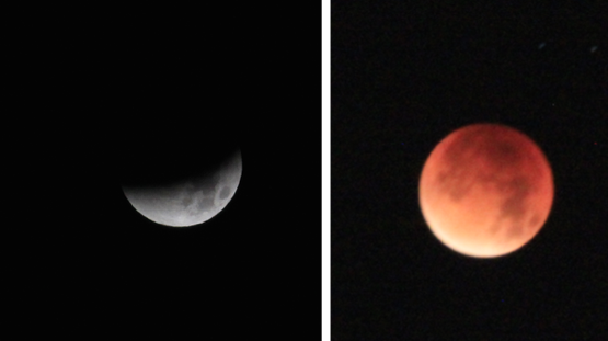 Eclipse de Lune - 28 sept. 2015, 4h47 - Châtenay-Malabry, France - collection perso.
