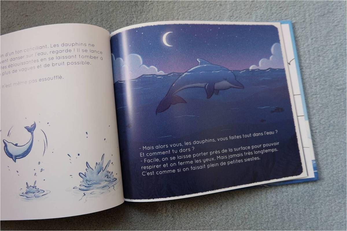 10 SUPER livres d'animaux !