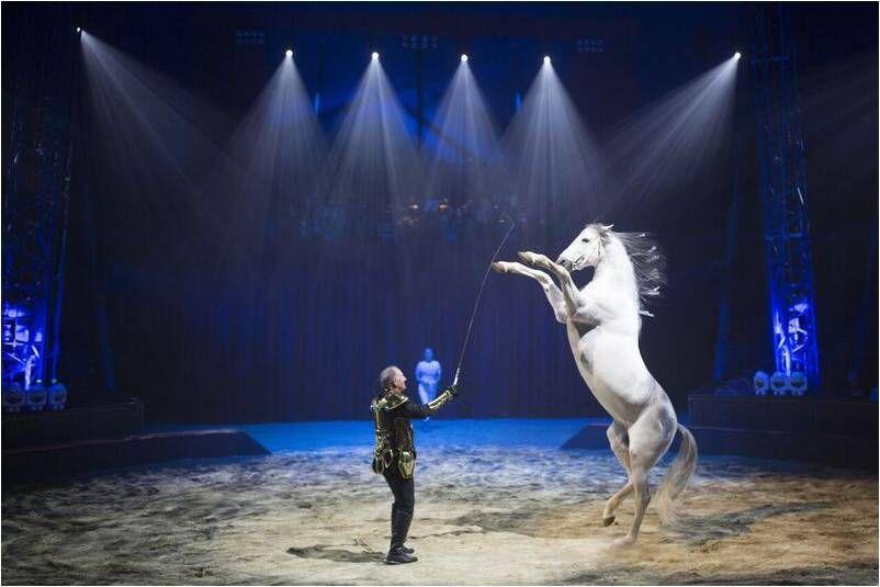 Quintessence, élégant spectacle équestre et aérien, Alexis Gruss  x Les Farfadais