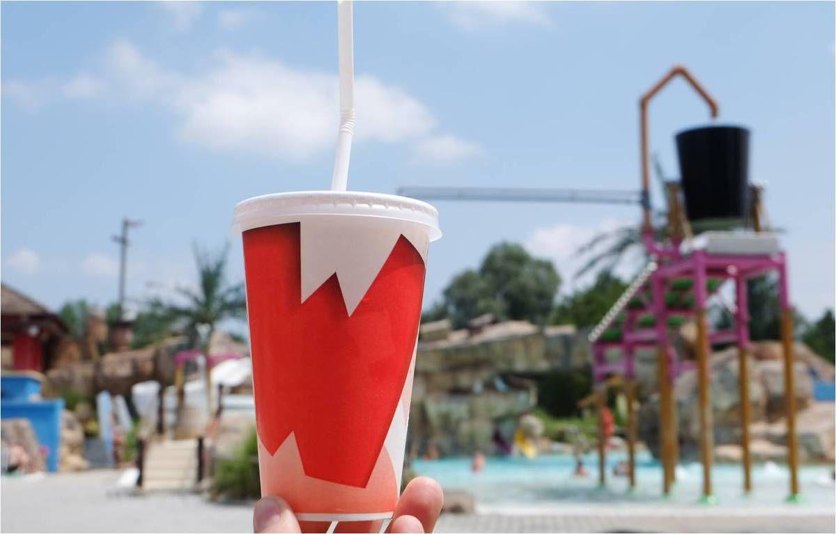 Cet été à Walibi !