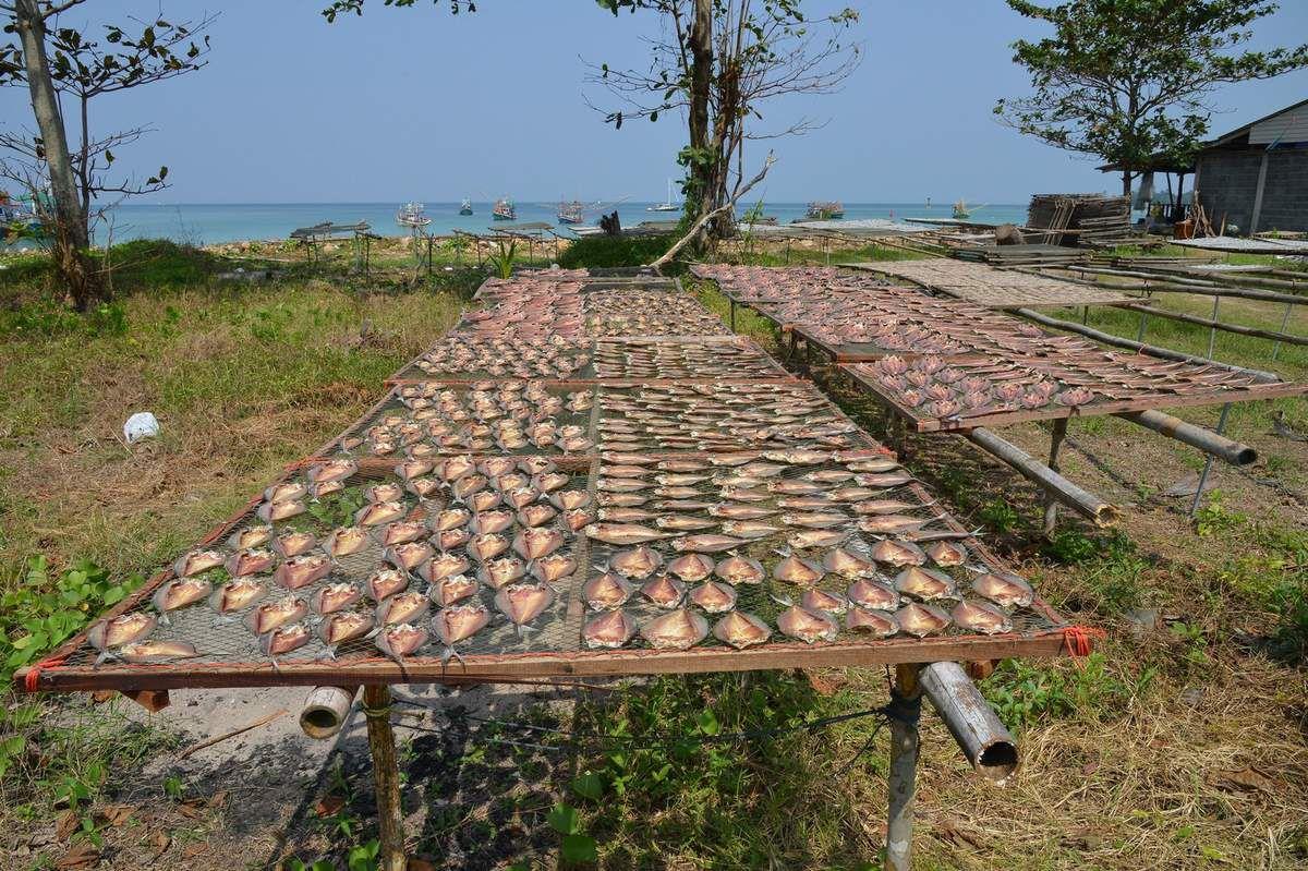Thaïlande 2015 : Koh Phangan , à la découverte de l'île ...