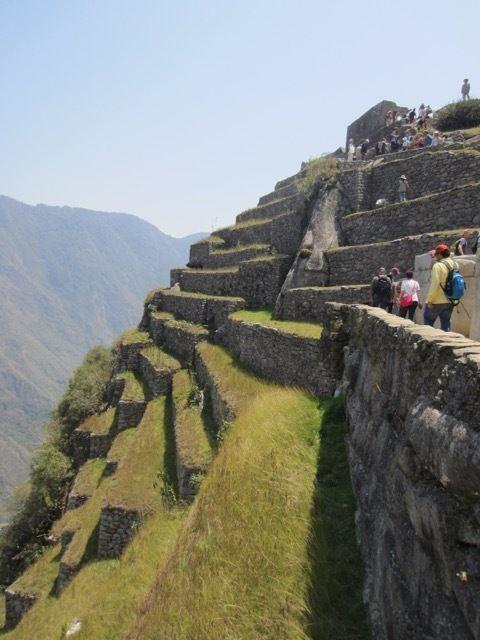formidable ensemble de terrasses sur l'abrupt versant ouest du site