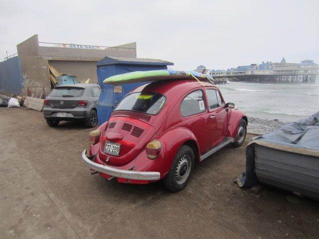 VW Coccinelle : cool