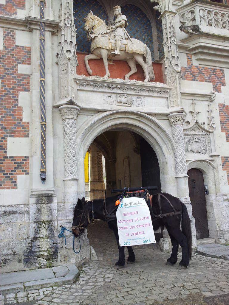Une marche entre Mareuil sur cher et Blois avec une halte remarquée au marché place Louis XII.Une balade entre les Châteaux :Monthou ,Chaumont,Fougères..De belles rencontres...