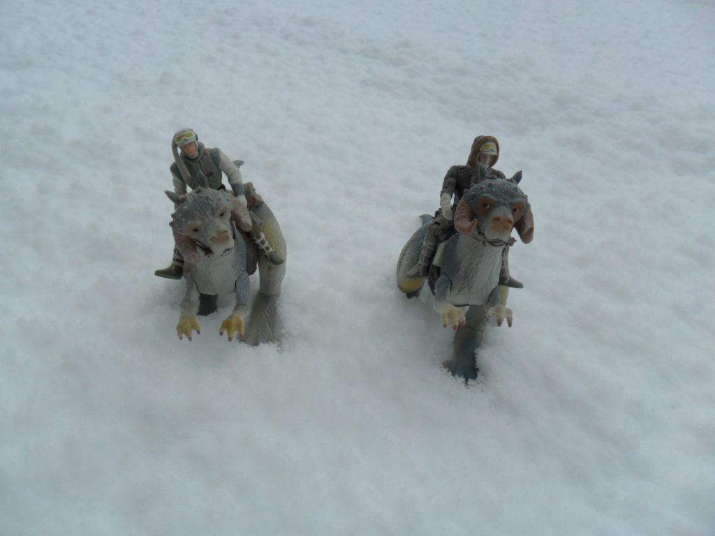 petit diorama avec la neige qui est tombé Ob_47b971_sam-0007