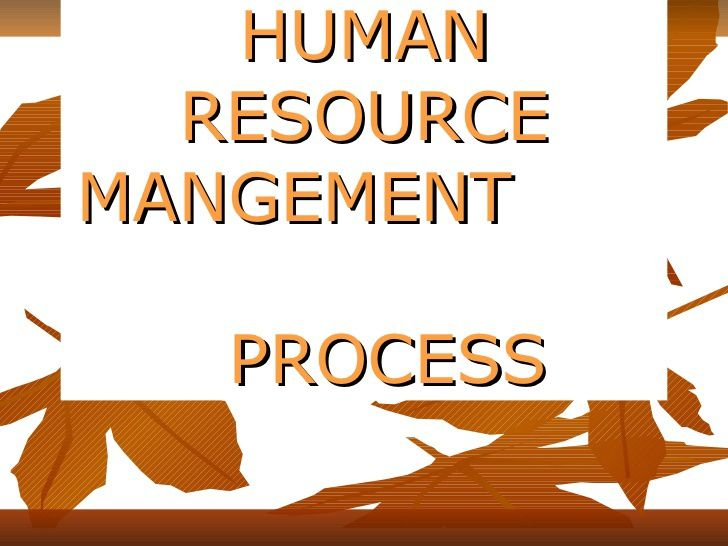 importance of human resources wikipedia