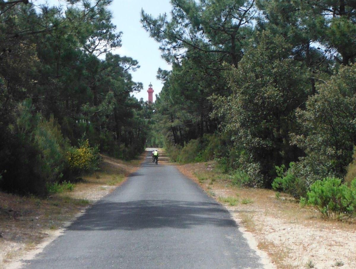 Piste cyclable dans la forêt de la Coubre au nord de Royan. Tout au fond, pointe le phare de la Coubre, haut de 64 mètres.