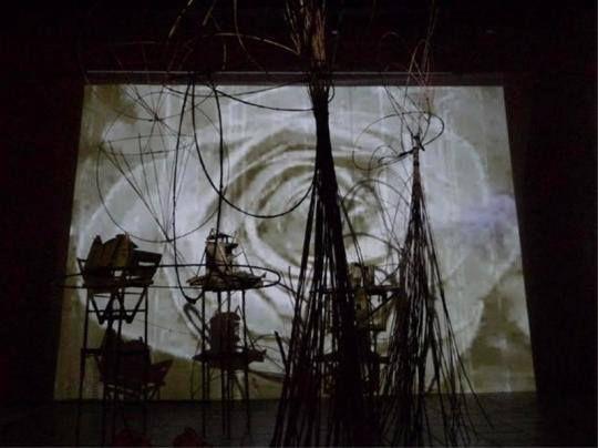 installation artistique de l'artiste Lili-oto, artiste interdit d'exposition publique dans les institutions d'art contemporain, Frac Languedoc Roussillon, CRAC de Sète, musée régional de Sérignan, aspirateur de Narbonne, institutions publiques financées par l'argent du contribuable.