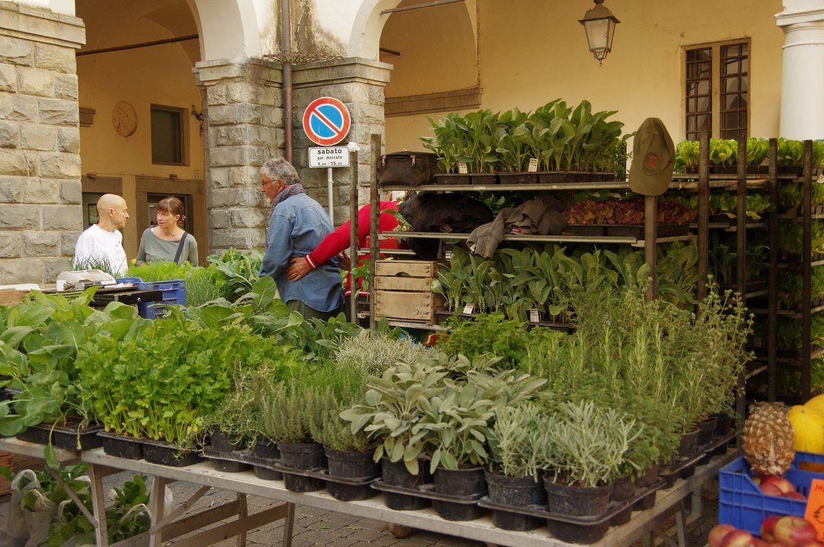 Kräuter gab es reichlich, auch Käse und regionale Wurstwaren sowie einen Stand mit Geflügel und leckeren Brathähnchen....