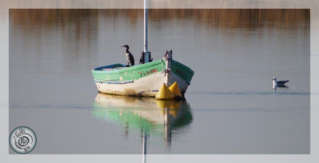 Palavas-les-Flots, parc du Levant et bord de mer