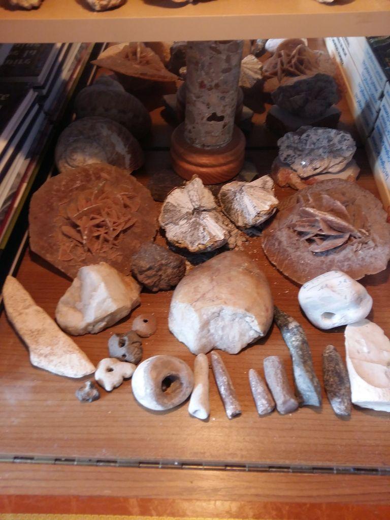 Je crois que la collection de cailloux  de Papou doit y être pour quelque chose à  leur attirence  pour  rechercher de beaux cailloux