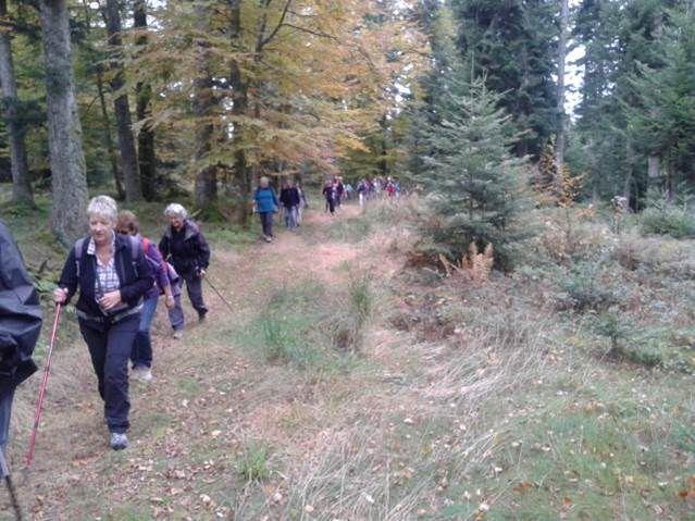 DIMANCHE 23 OCTOBRE 2016 - LES NOES (dans les Monts de la Madeleine, entre Loire et Allier)