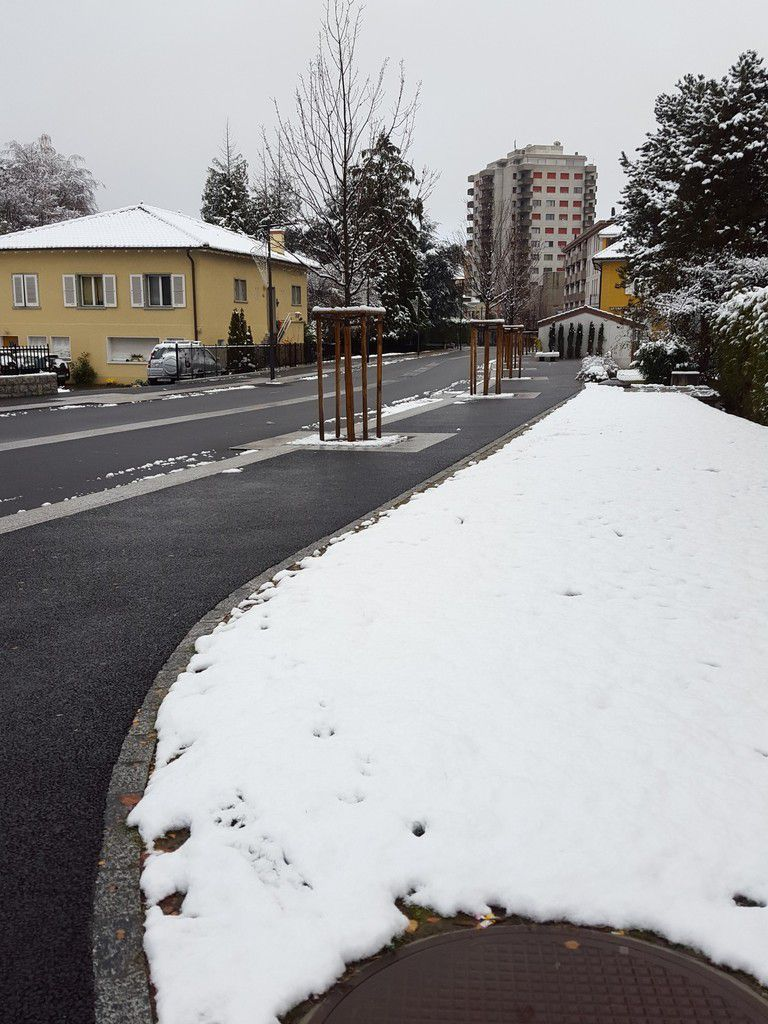 Première neige sur la zone 30 de Monthey