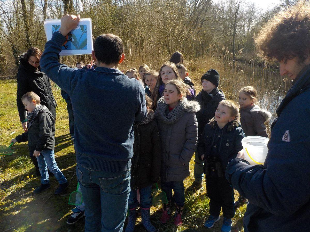 Nicolas Monaque, animateur nature découvre avec les enfants...