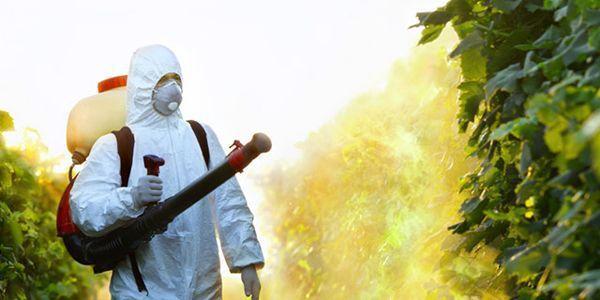 La Commission européenne veut renouveler l'autorisation du glyphosate pour 15 ans !