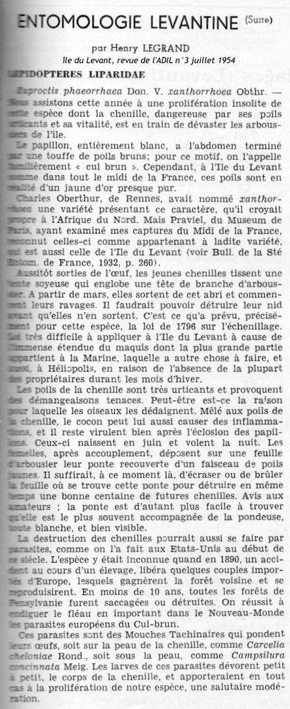 Dans les revues &quot&#x3B;île du Levant&quot&#x3B; : le bombyx cul-brun de l'arbousier
