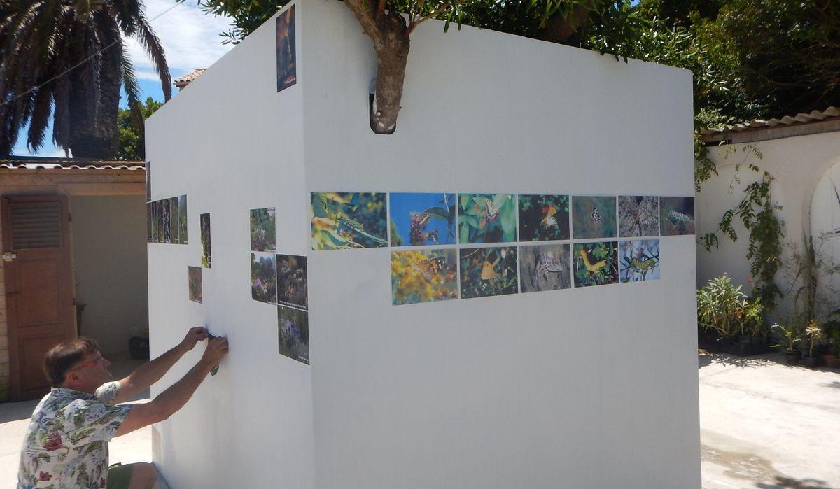 Derniers préparatifs des expositions - AGIR O LEVANT