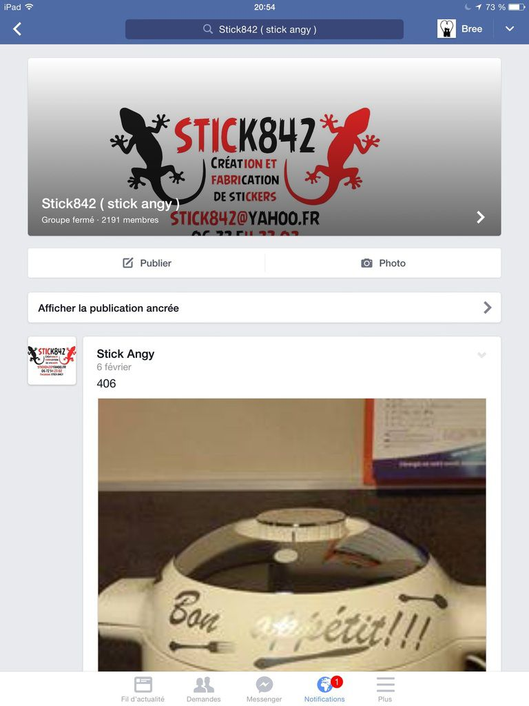 STICK 842 groupe privé mais faire demande en amie