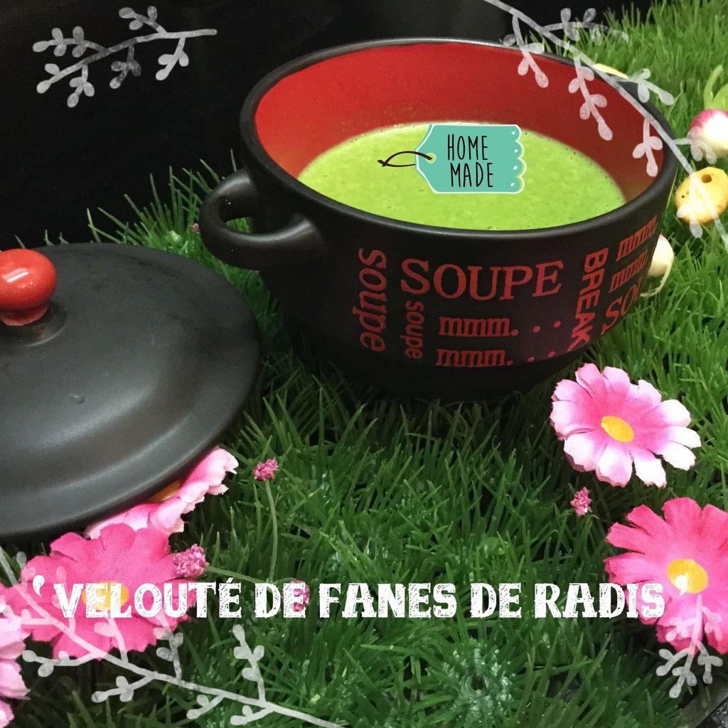 VELOUTÉ DE FANES DE RADIS