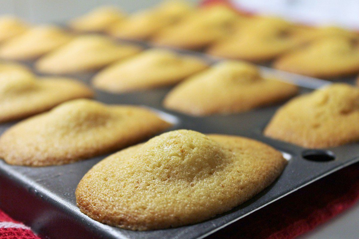 Madeleines (ma recette ultime) #42