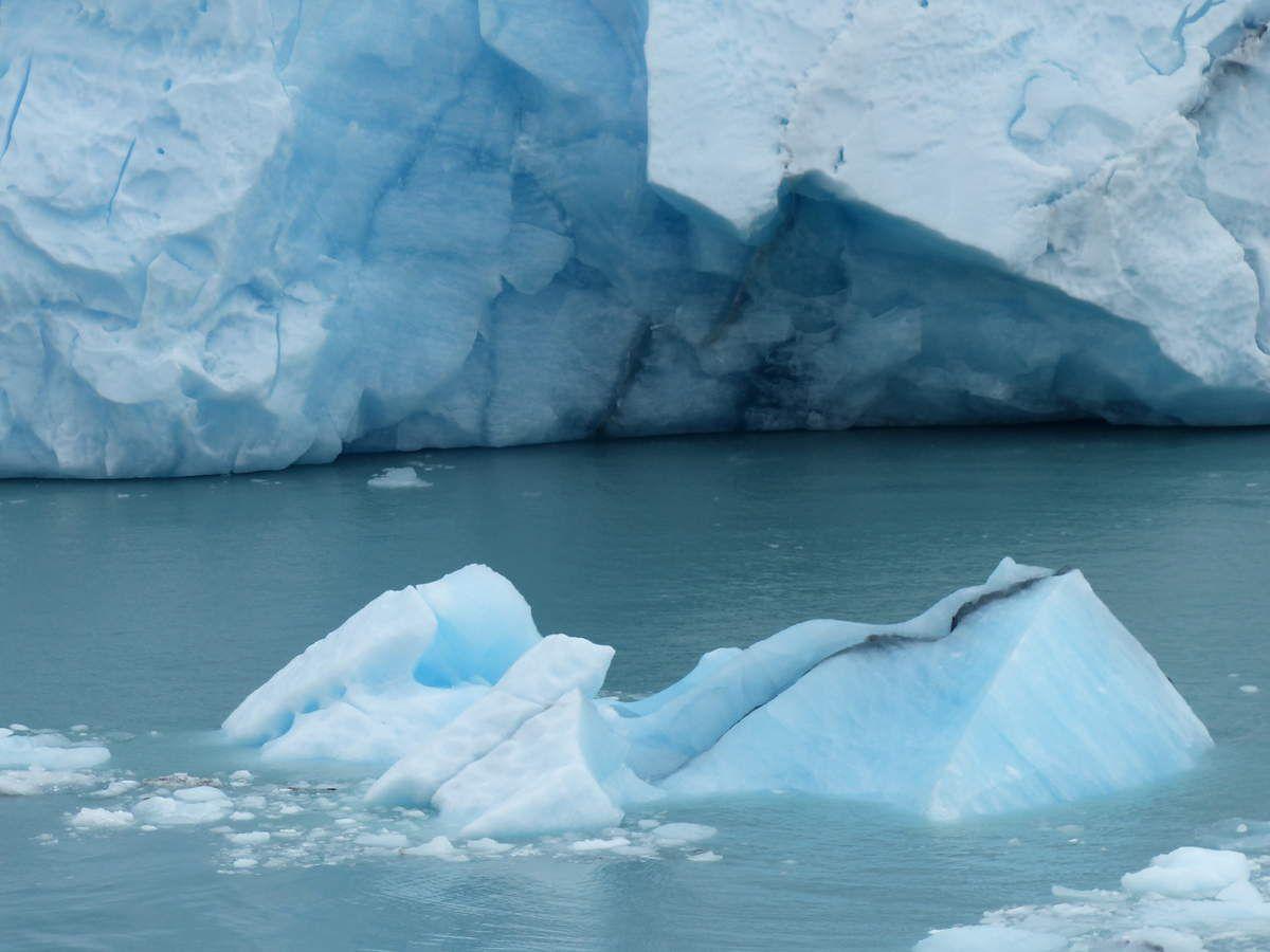 glacier Perito Moreno :254 km²  , 4 km de front sur 30 km , 40 à 60 m de haut soit 20 étages