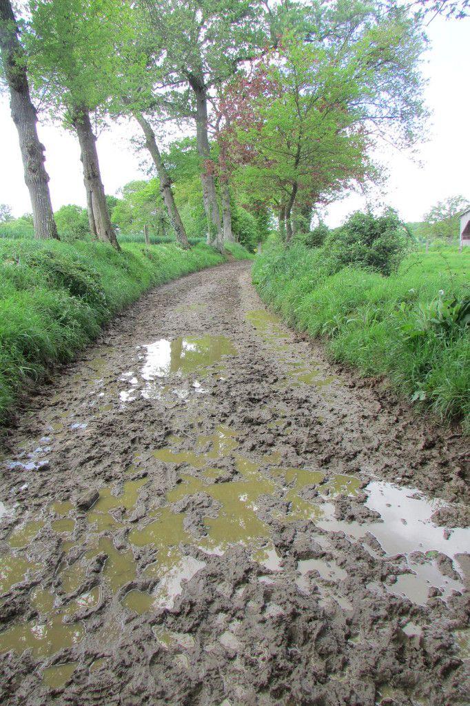 humide humide!!!! bain de boue ...cure à bas prix!