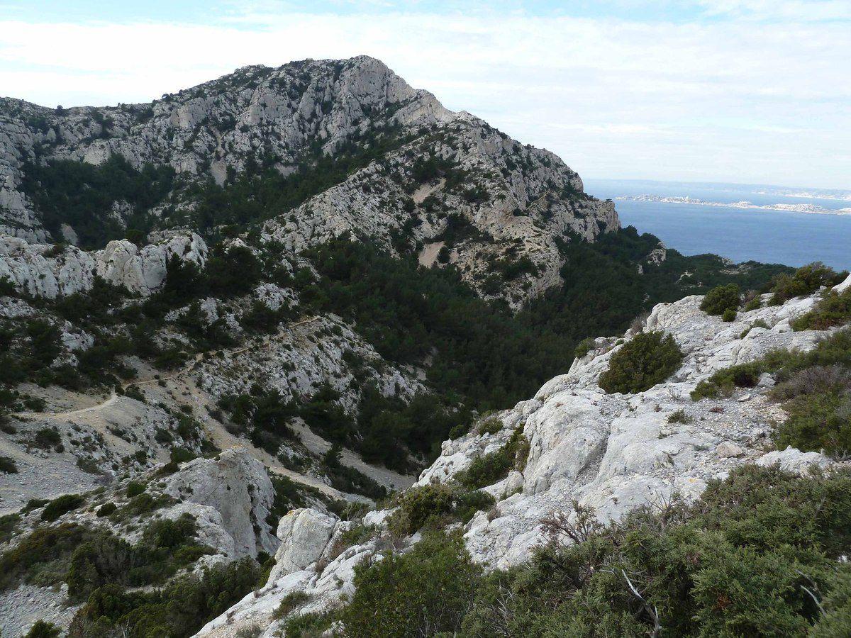 Pastré - Marseilleveyre le 26 janvier 2015