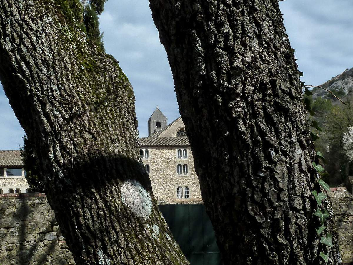 Randonnée agréable dans le lit de la Sénancole avant de découvrir l'abbaye de Sénanque puis retour vers Gordes ,le tout avec une météo appréciable ...le pied quoi !