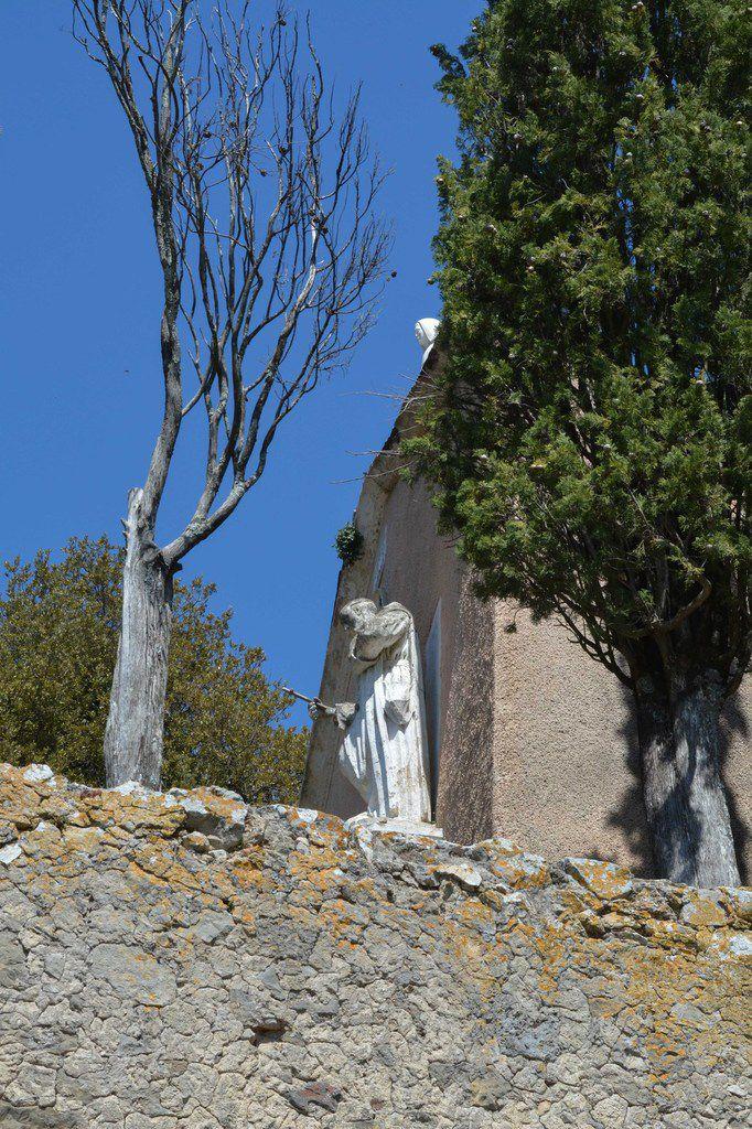 La Roquebrussanne . Reco