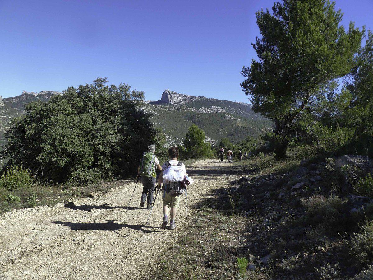 Un peu de descente (avant la grande ) et nous voilà à la bergerie du Brigou.