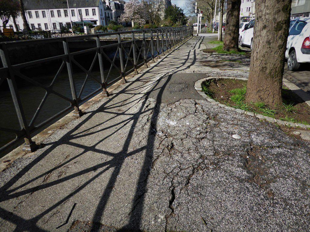 Faudra-t-il abattre bientôt tous les marronniers sur les quais de l'Odet à Quimper ?