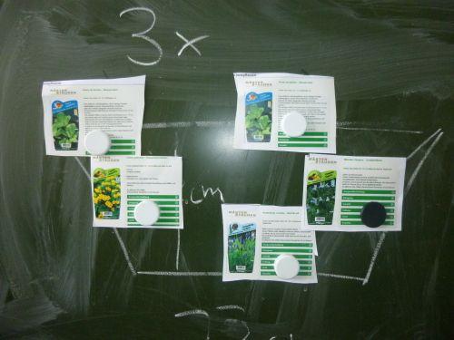 Wasserpflanzen auswählen
