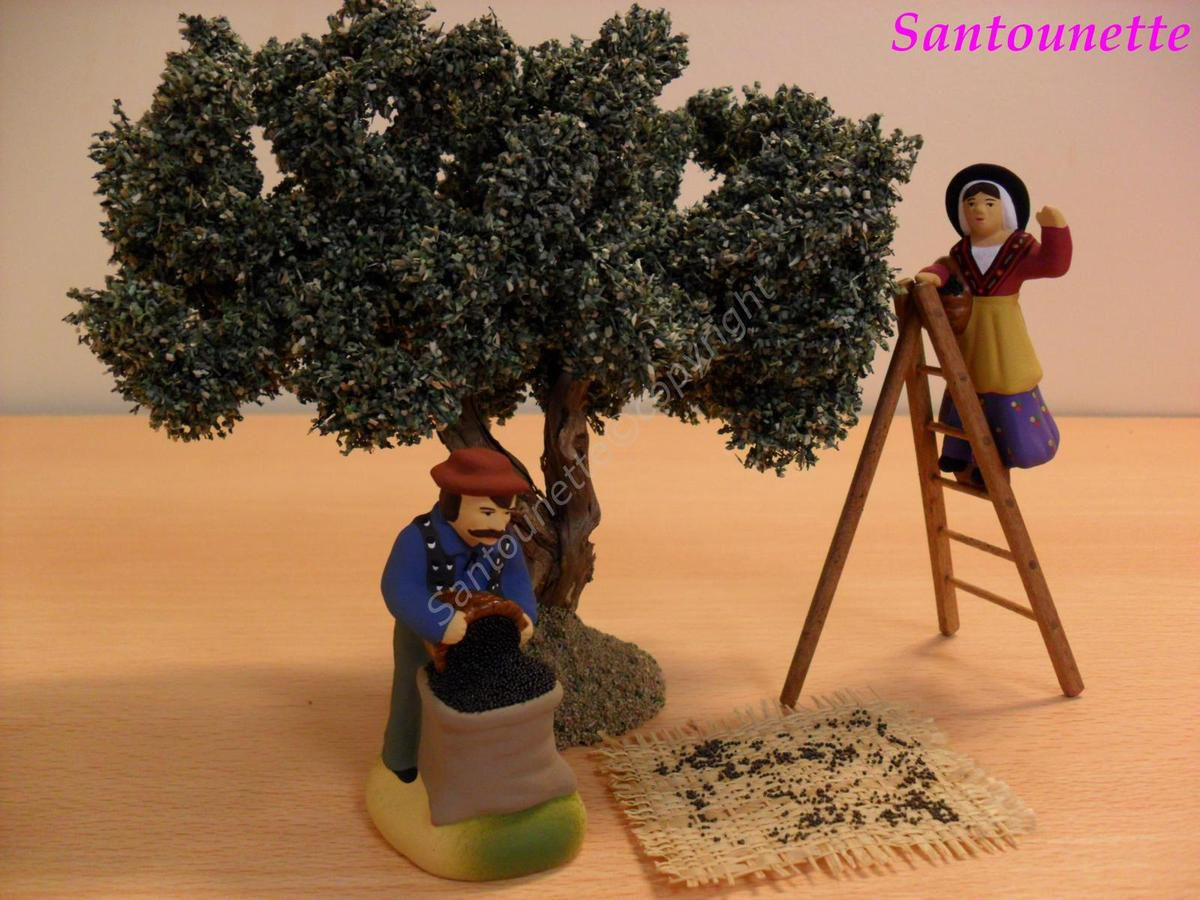 Les ramasseurs d'olives