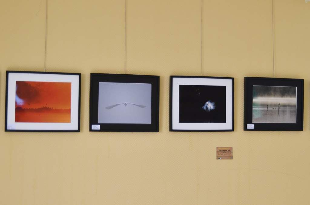 Concours - Expositions