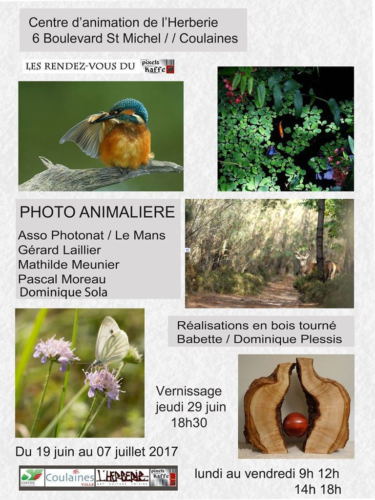EXPO PHOTOS COULAINES - SARTHE