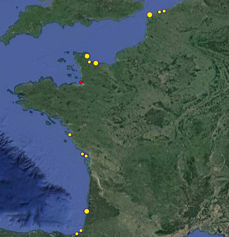 Map of Sowerby's beaked whale strandings in frace since 1969.