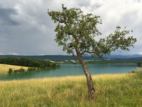 Lac de Montbel Ariège