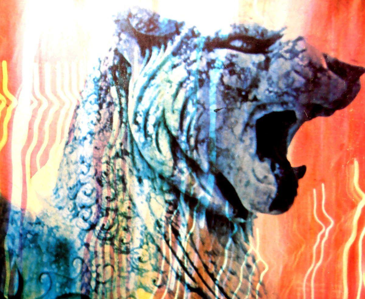 """Pochette de l'album """"Wolf City"""" de Amon düül 2"""