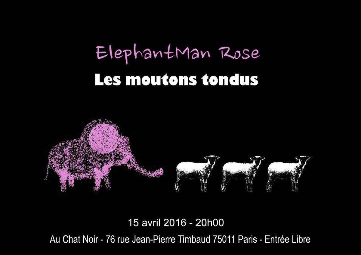 ElephantMan Rose + Les moutons tondus au Chat Noir le 15 avril