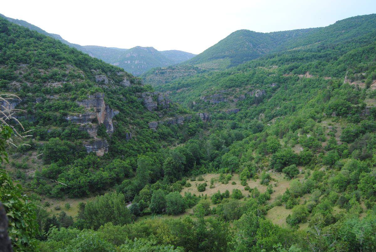 La vallée : paysage grandiose pour ces habitants haut perchés!
